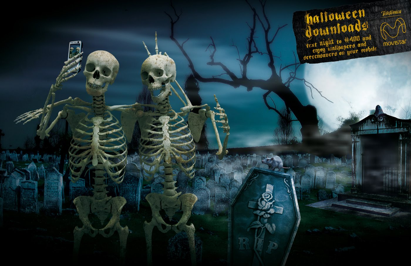 Funny Halloween Picture2017