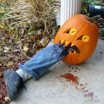 Funny Halloween Pictures Download