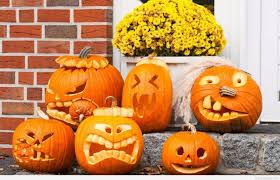 Funny Halloween Pictures Free