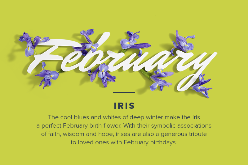 flowers of the month for February