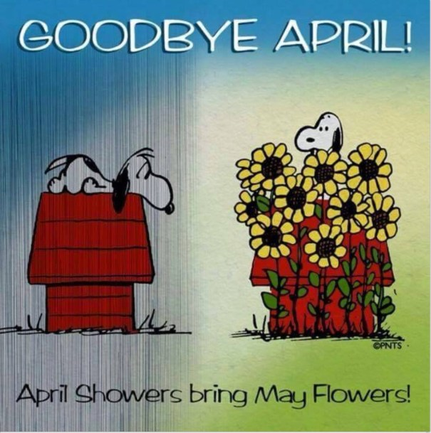 Goodbye April Hello May Images Clipart
