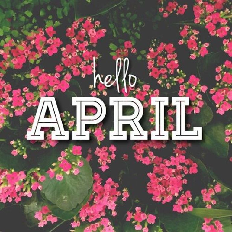 Hello April Flower Pinterest