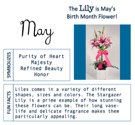 May Birth Flower, Meaning and Facts